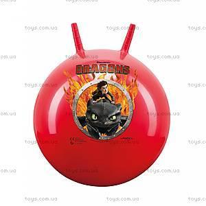 Мяч-прыун «Как приручить дракона», 50 см, JN59443