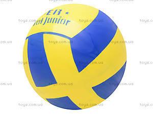 Мяч резиновый с декором, 004..008..016, фото