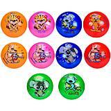 Мяч резиновый 25 см, MIX 5 цветов , RM2012, магазин игрушек