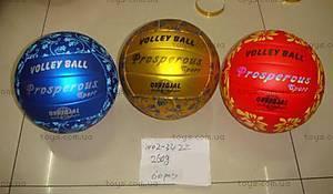 Мяч «Волейбол», W02-3422