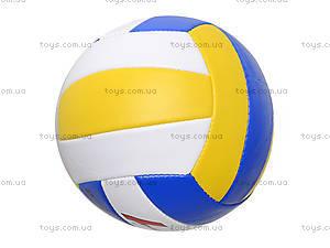 Мяч волейбольный, 280 гр, BT-VB-0031, купить