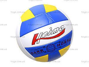 Мяч волейбольный, 280 гр, BT-VB-0031, фото