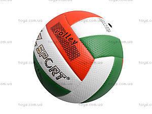 Волейбольный мяч, цвет на выбор, BT-VB-0039, фото