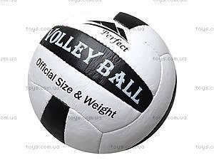Мяч волейбольный Perfekt, , купить