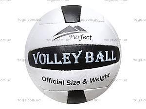 Мяч волейбольный Perfekt, , фото