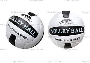 Мяч волейбольный Perfekt,