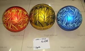 Мяч волейбольный, W02-3501, купить
