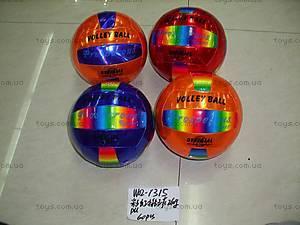 Мяч волейбольный, 4 вида, W02-1315-1