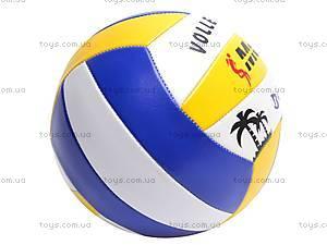 Мяч волейбольный для детей, 513/25651-13, купить