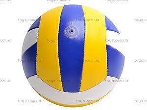 Мяч волейбольный для детей, 513/25651-13, фото