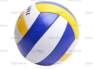 Мяч волейбольный для детей, 513/25651-13, отзывы