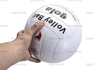 Мяч волейбольный Gola, GOLA, фото