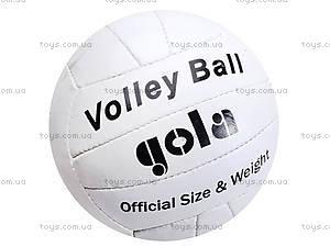 Мяч волейбольный Gola, GOLA, цена