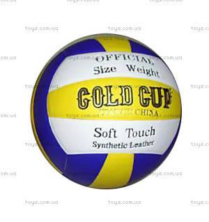 Мяч волейбольный Gold Cup, W02-1321