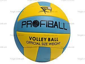 Мяч волейбольный Profiball, EV3160