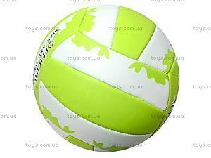 Мяч волейбольный PVC, BT-VB-0021, фото