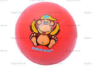 Мяч «Забавные животные», W02-1011
