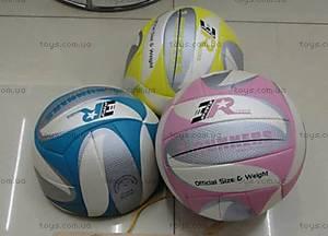 Мячик для игры в волейбол, W02-4590