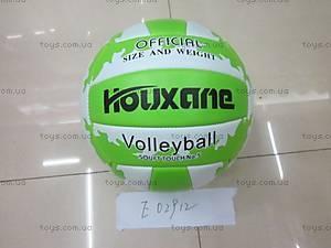 Мячик, для игры в волейбол, E02912