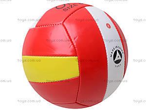 Мячик для волейбола, 8 видов, Tilly-3, купить