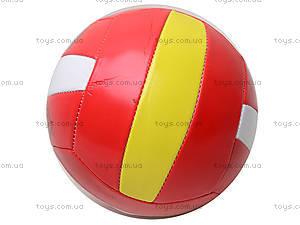 Мячик для волейбола, 8 видов, Tilly-3, фото