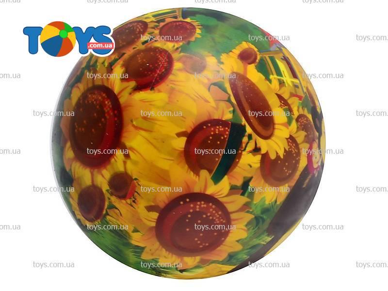 Мячик «Маша и Медведь», в сетке - Надувные мячи в интернет ...