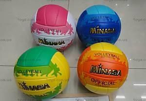Мячик волейбольный, W02-4728