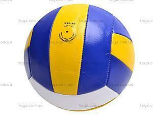Мячик волейбольный, детский, QS-V051, фото