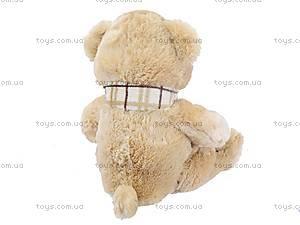 Мягкая игрушка «Медведь с шарфом», большая, S-YZ-4036/70S, игрушки