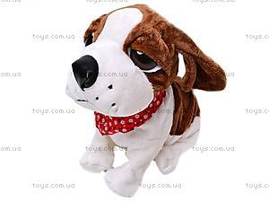 Мягкая игрушка «Собачка», CL1187ABC, купить