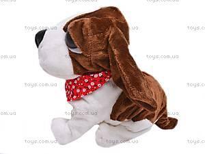 Мягкая игрушка «Собачка», CL1187ABC, цена