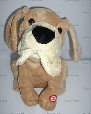 Мягкая игрушка «Собака», HS-3271