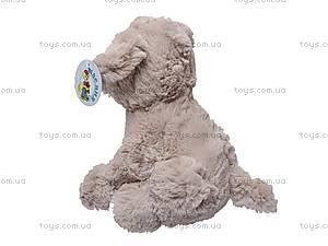 Мягкая игрушка «Собака», музыкальная, Q-1011-122C, отзывы
