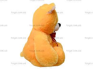 Мягкая игрушка «Медведь Солодунчик», 10.02.04, купить