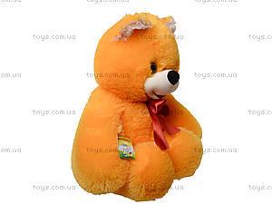 Мягкая игрушка «Медведь Солодунчик», 10.02.04, фото