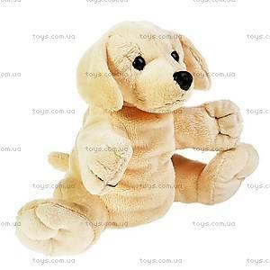 Мягкая игрушка-рукавичка «Собачка», 21-907762-5, купить