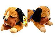 Мягкая Собачка, разные виды, С22968, отзывы