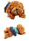 Собачка, 3 вида, C22843, фото