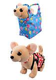 Мягкая игрушка «Собачка в сумке» 4 вида, C33970, фото