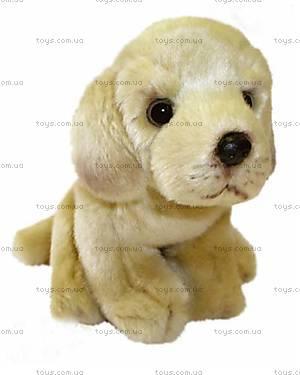 Мягкая игрушка «Собака Бой», FJD-1544Y