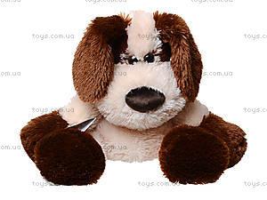 Мягкая игрушка «Собака Дружок», 12.08.04, цена