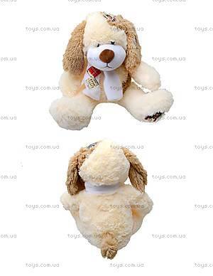 Мягкая игрушка «Собака с бантом», S-JY-359240