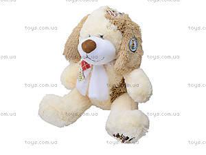 Мягкая игрушка «Собака с бантом», S-JY-359240, цена