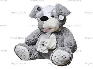 Мягкая игрушка «Собака с шарфом», ABY29510, купить