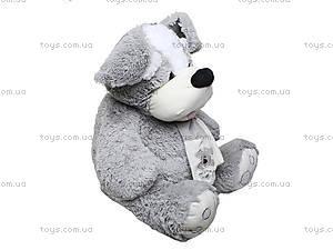 Мягкая игрушка «Собака с шарфом», ABY29510, цена