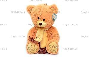 Мягкий медведь, в шарфе, S-YZ-4296/30