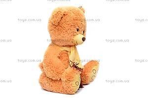 Мягкий медведь, в шарфе, S-YZ-4296/30, фото