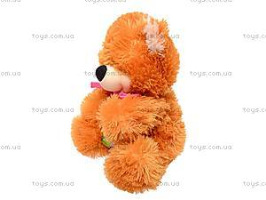 Мягкий медведь «Веселун», 10.01.00, фото