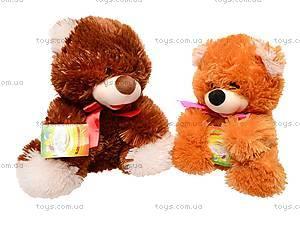 Мягкий медведь «Веселун», 10.01.00, игрушки