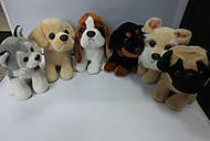 Мягкие ирушки собачки, ассортимент, 78506